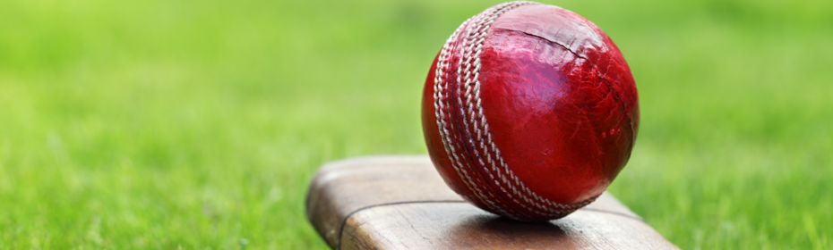 Cricket_Banner_Image
